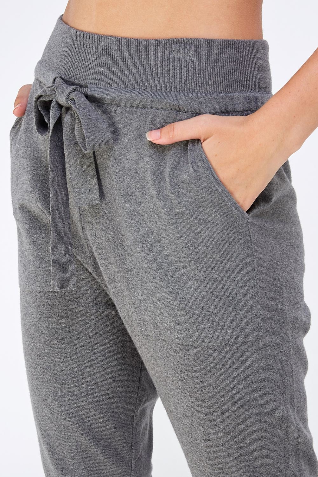 Lumiere Grey Slim Joggers - Back Cropped Image