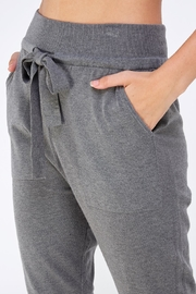 Lumiere Grey Slim Joggers - Back cropped