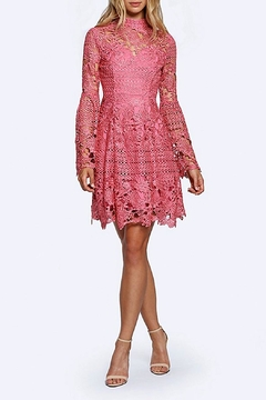 Shoptiques Product: Lumier Rose Dress