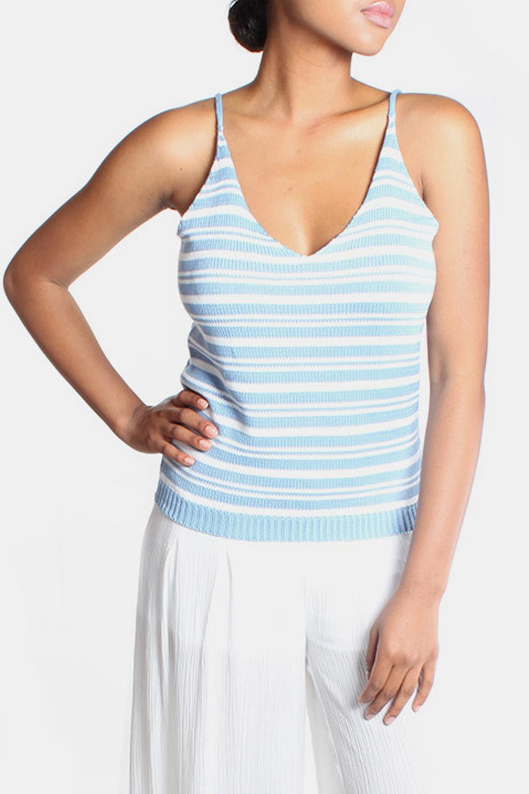 Lumiere Sky Knit Striped Top - Main Image