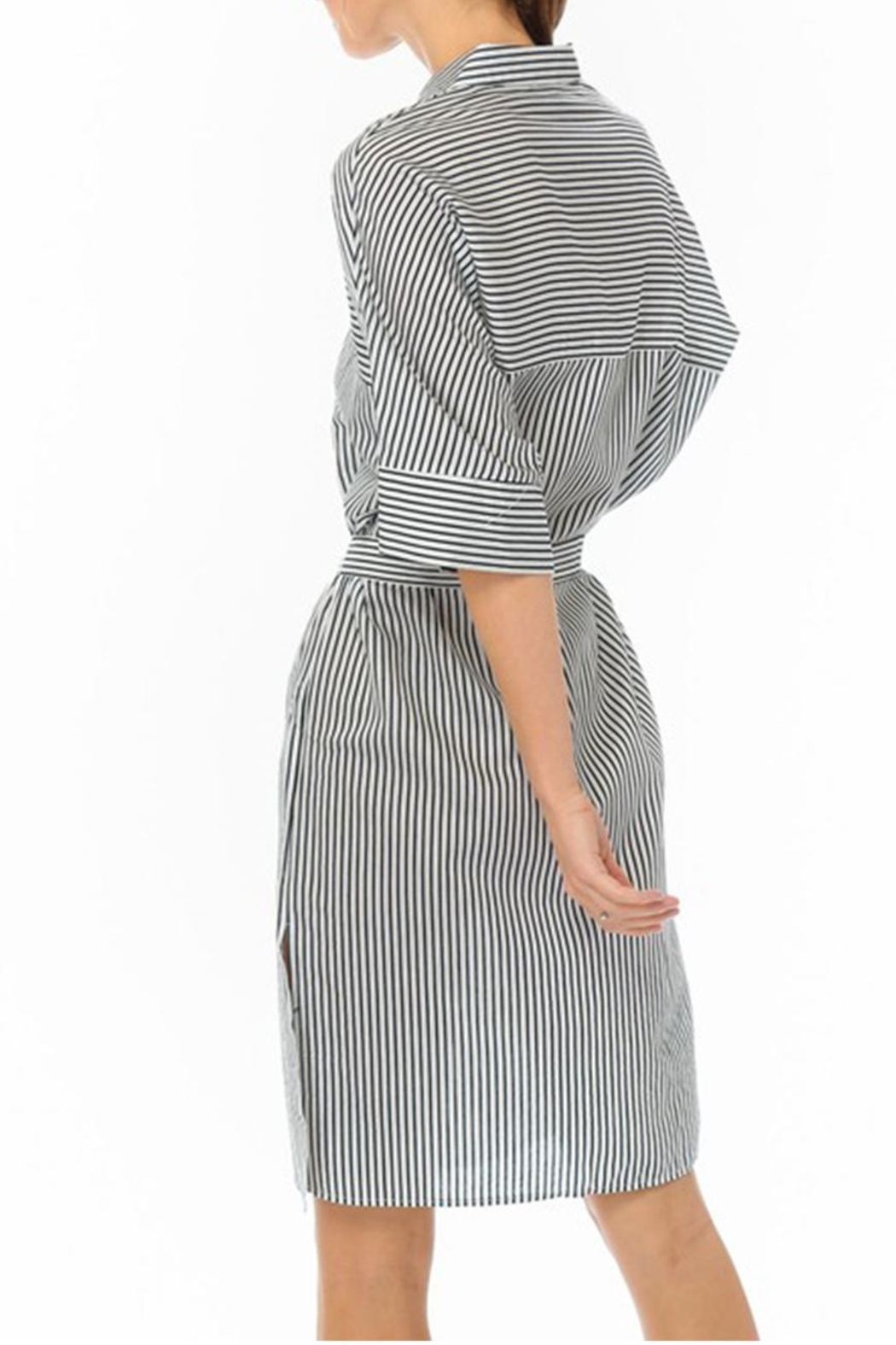 Lumiere Stripe Shirt Dress - Front Full Image