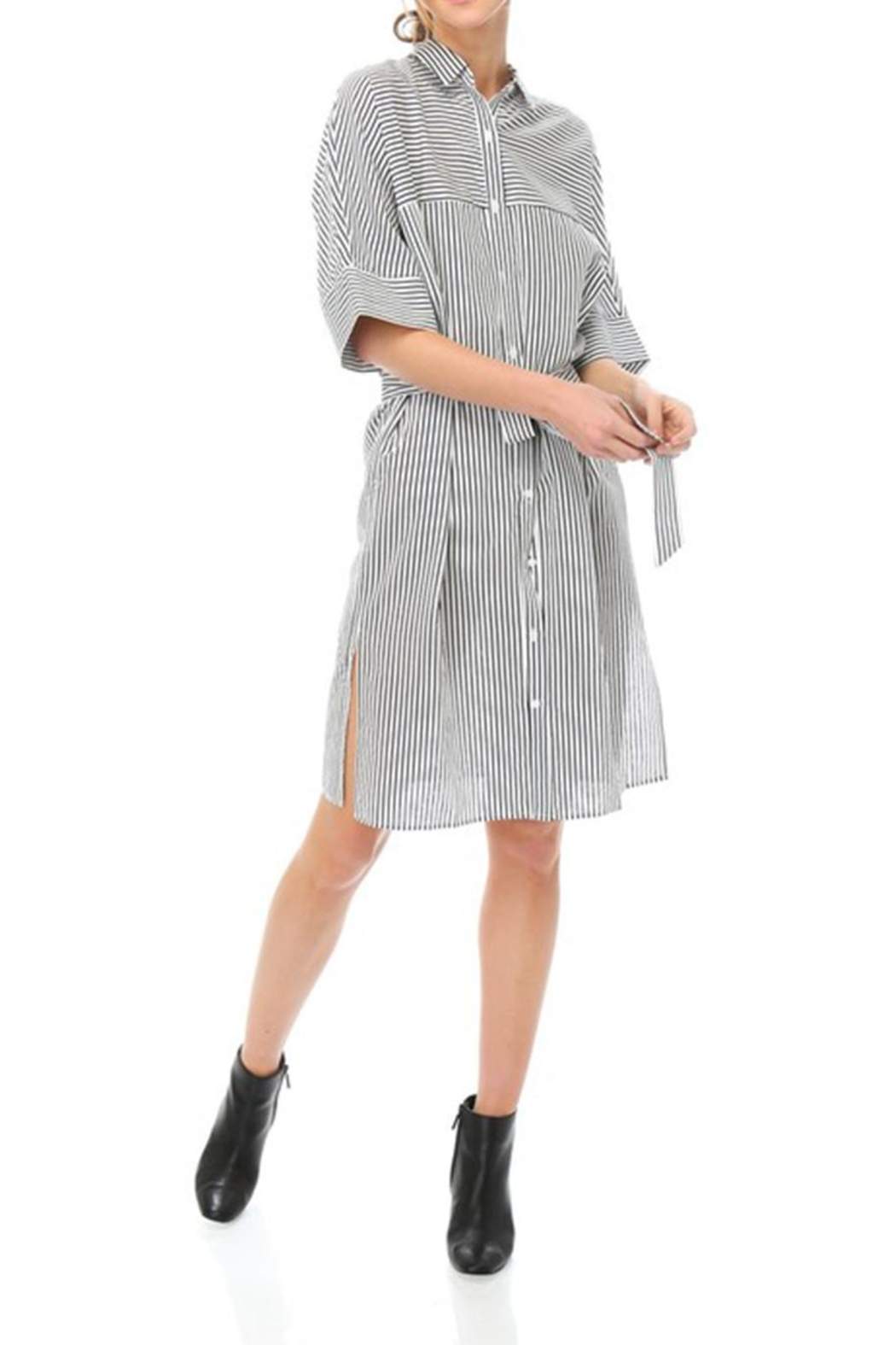Lumiere Stripe Shirt Dress - Back Cropped Image