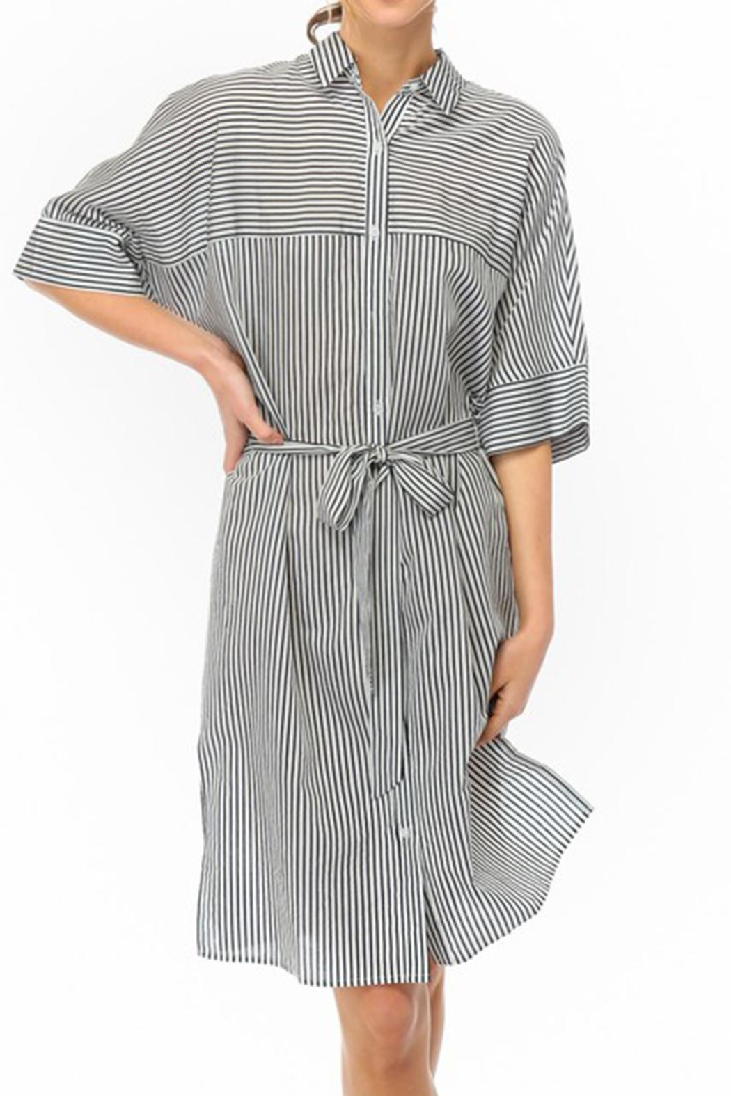 Lumiere Stripe Shirt Dress - Main Image