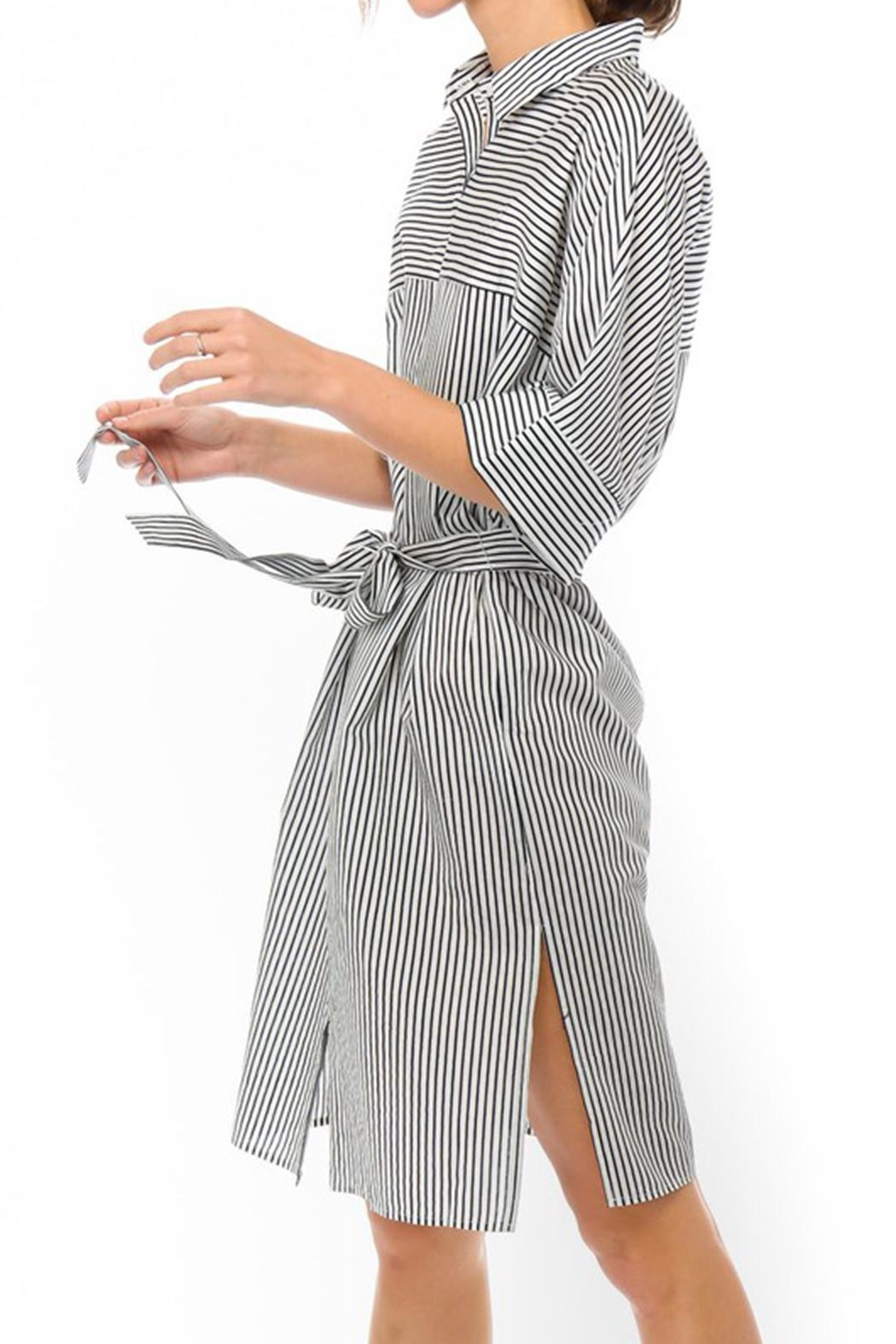 Lumiere Stripe Shirt Dress - Side Cropped Image