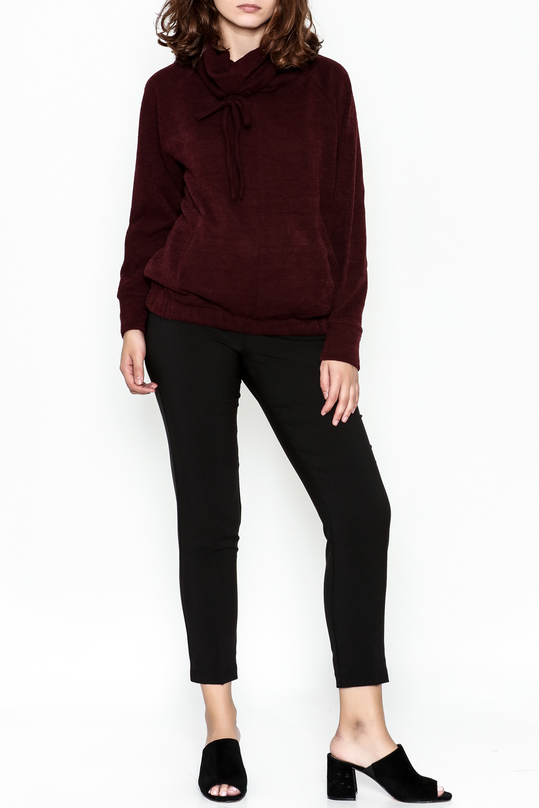 Lumiere Tie Turtleneck Sweater - Side Cropped Image