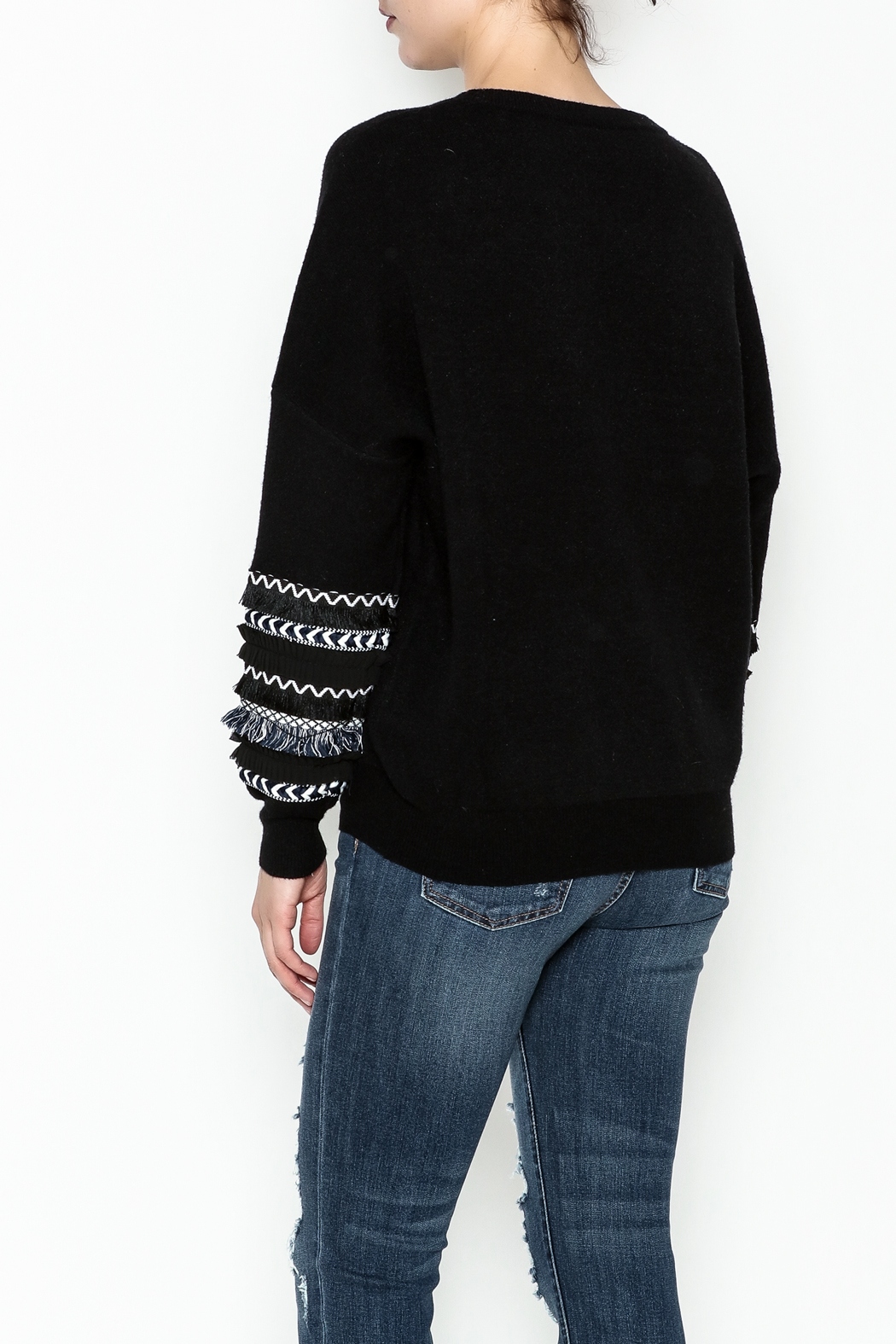 Lumiere Fringe Sleeve Sweater - Back Cropped Image