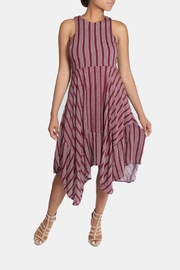 Lumiere Red Striped Dress - Product Mini Image