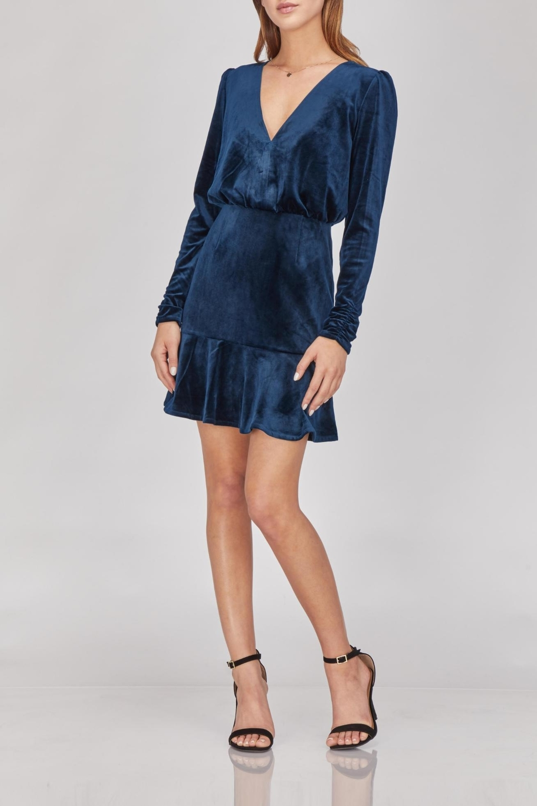 Greylin Luna Velvet Dress - Front Cropped Image