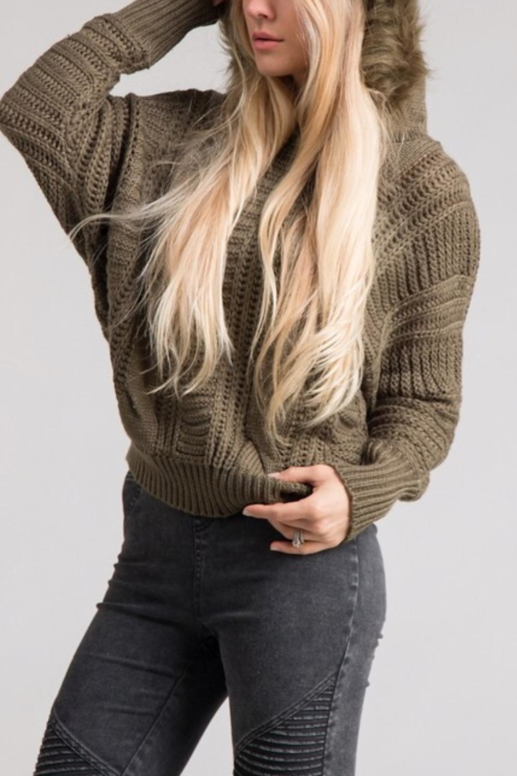 Lush Cable Knit Hoodie - Front Cropped Image