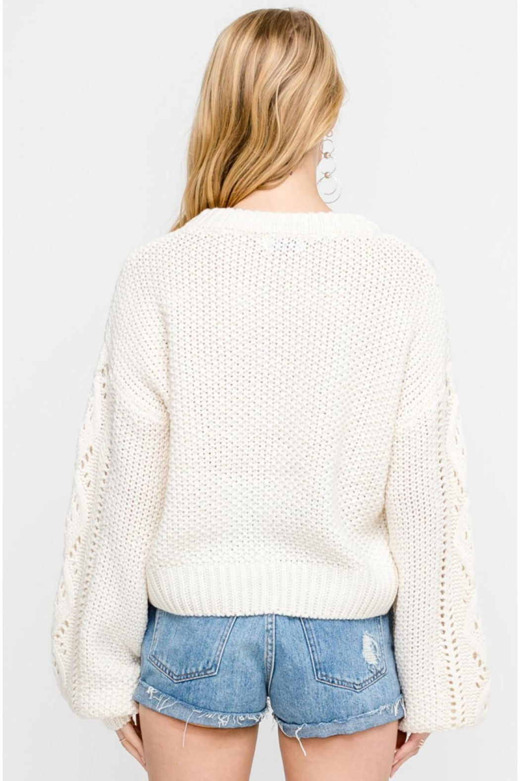 Lush Cable-Knit Pullover Sweater - Side Cropped Image