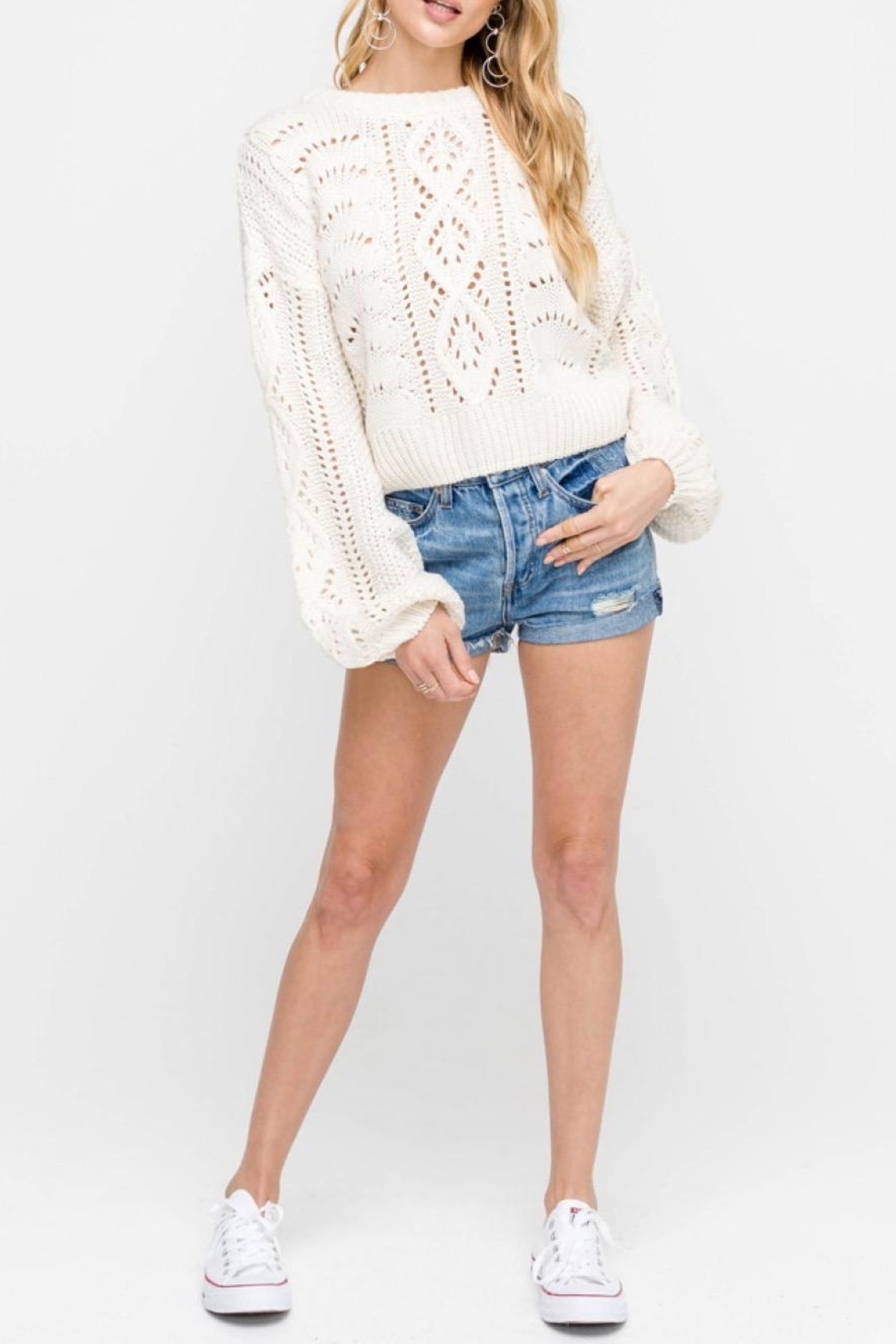 Lush Cable-Knit Pullover Sweater - Main Image