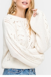 Lush Cable-Knit Pullover Sweater - Front full body
