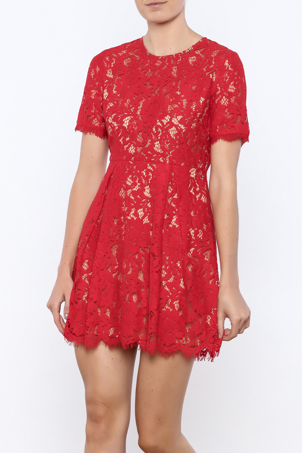 Lush Cherry Lace Dress - Main Image