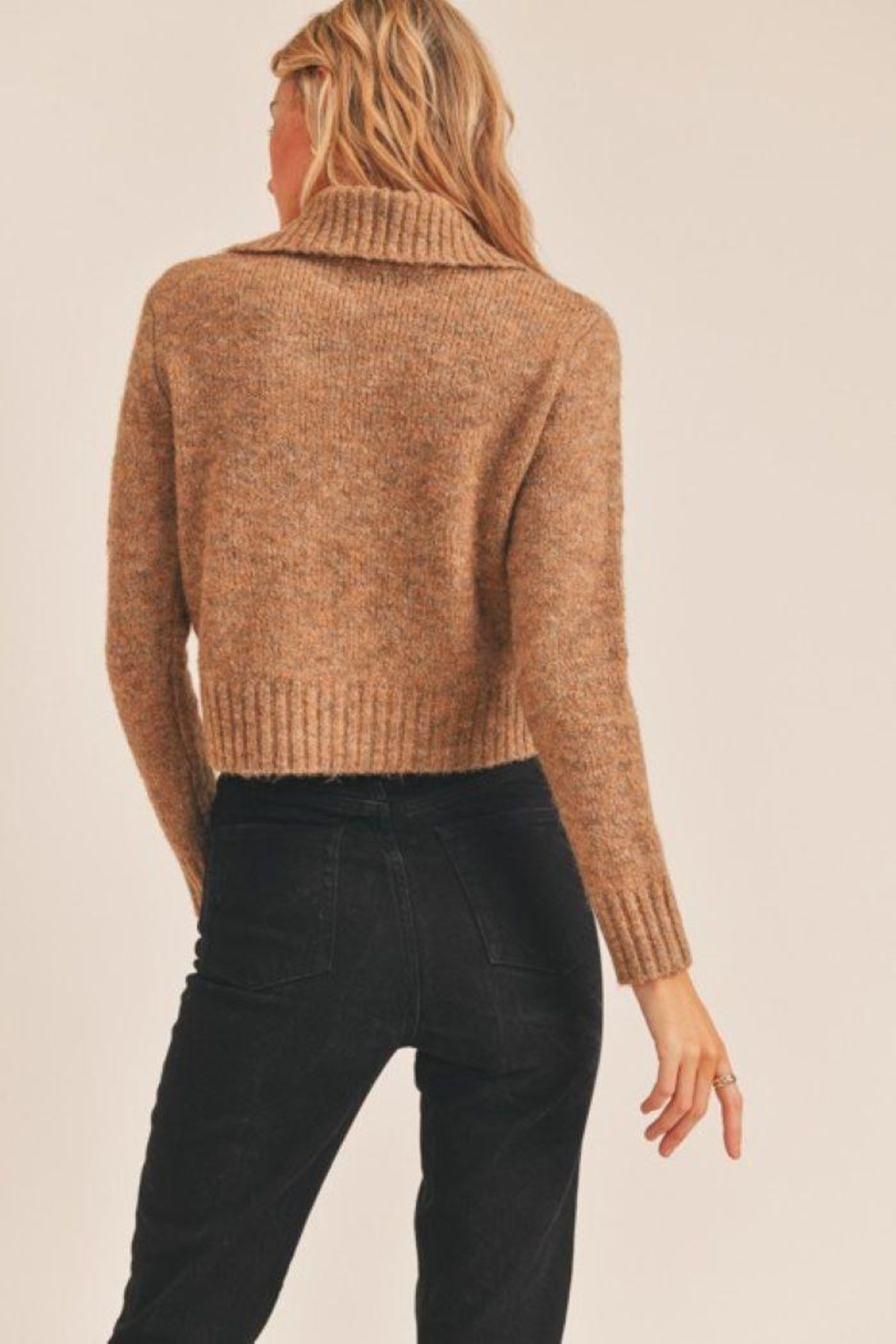 Lush Collared Button Cardigan - Back Cropped Image