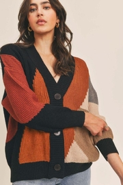 Lush Colorblock Button Down Cardigan - Back cropped