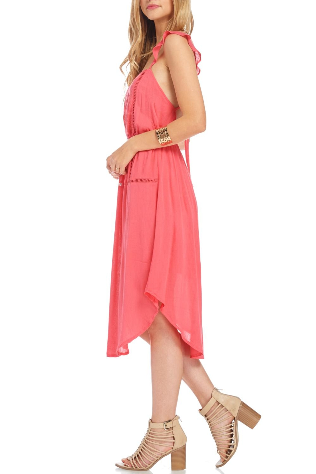 Lush Coral Embroidered Dress - Side Cropped Image