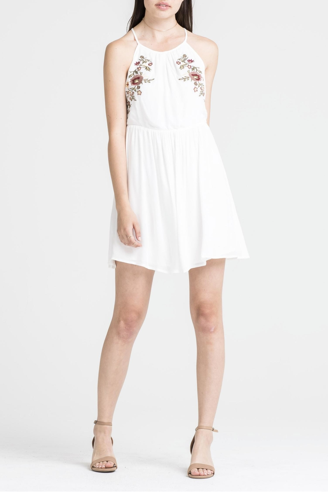 Lush Emroidered Dress - Front Cropped Image