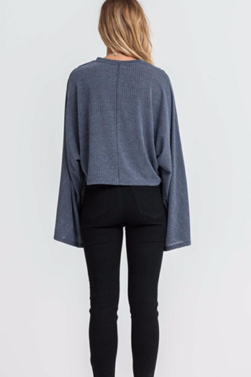 Lush Long Sleeve Top - Front Full Image