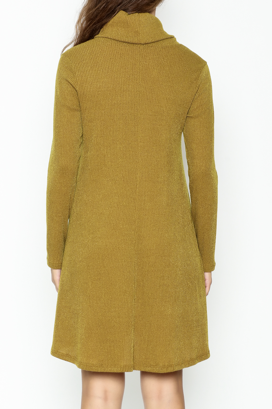 Lush Longsleeve Sweater Dress - Back Cropped Image