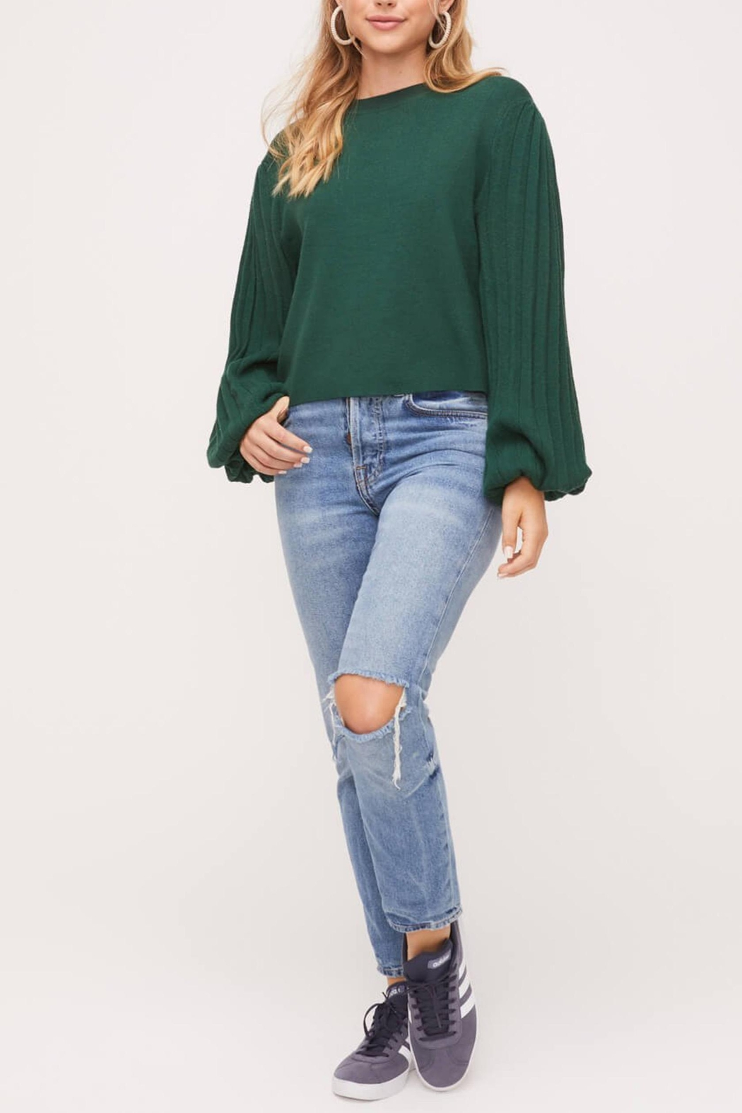 Lush Pleated-Sleeve Crewneck-Pullover Sweater - Back Cropped Image