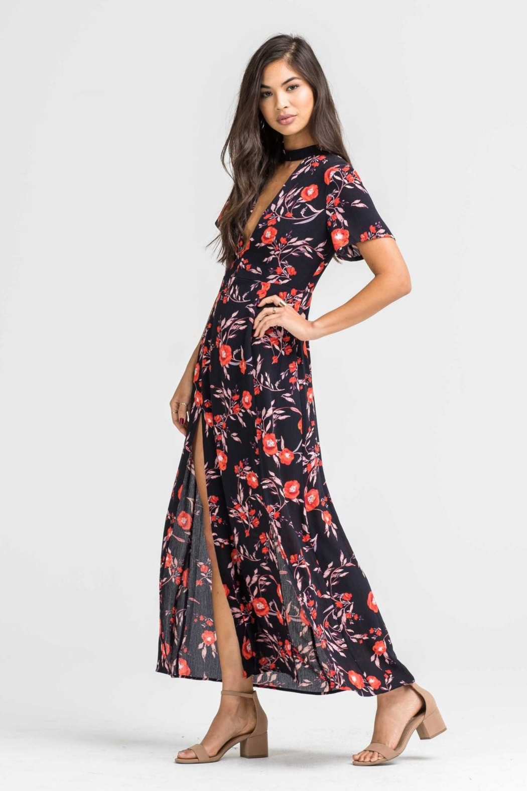 Lush Print Woven Dress - Side Cropped Image