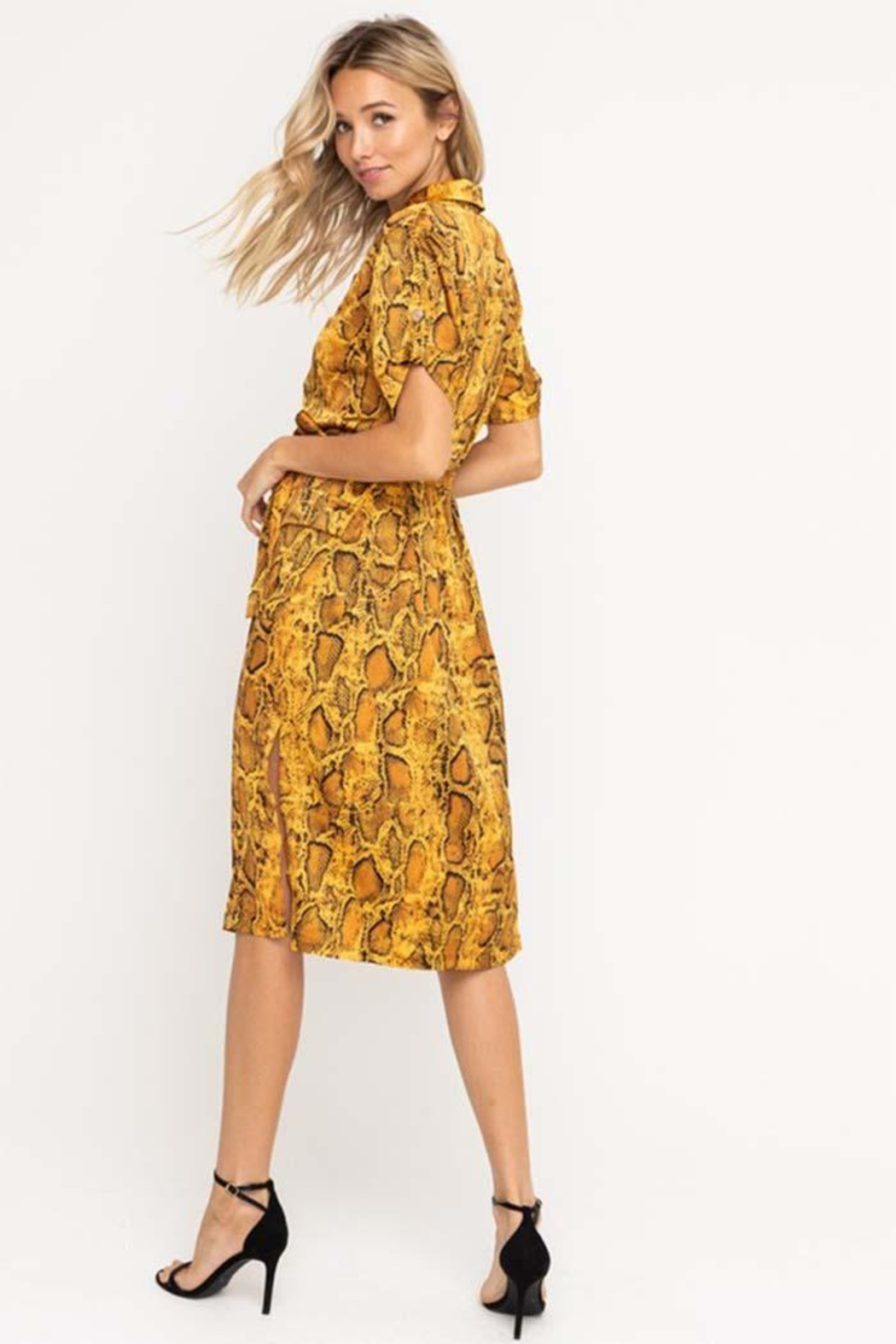 Lush Python Midi Dress - Front Full Image