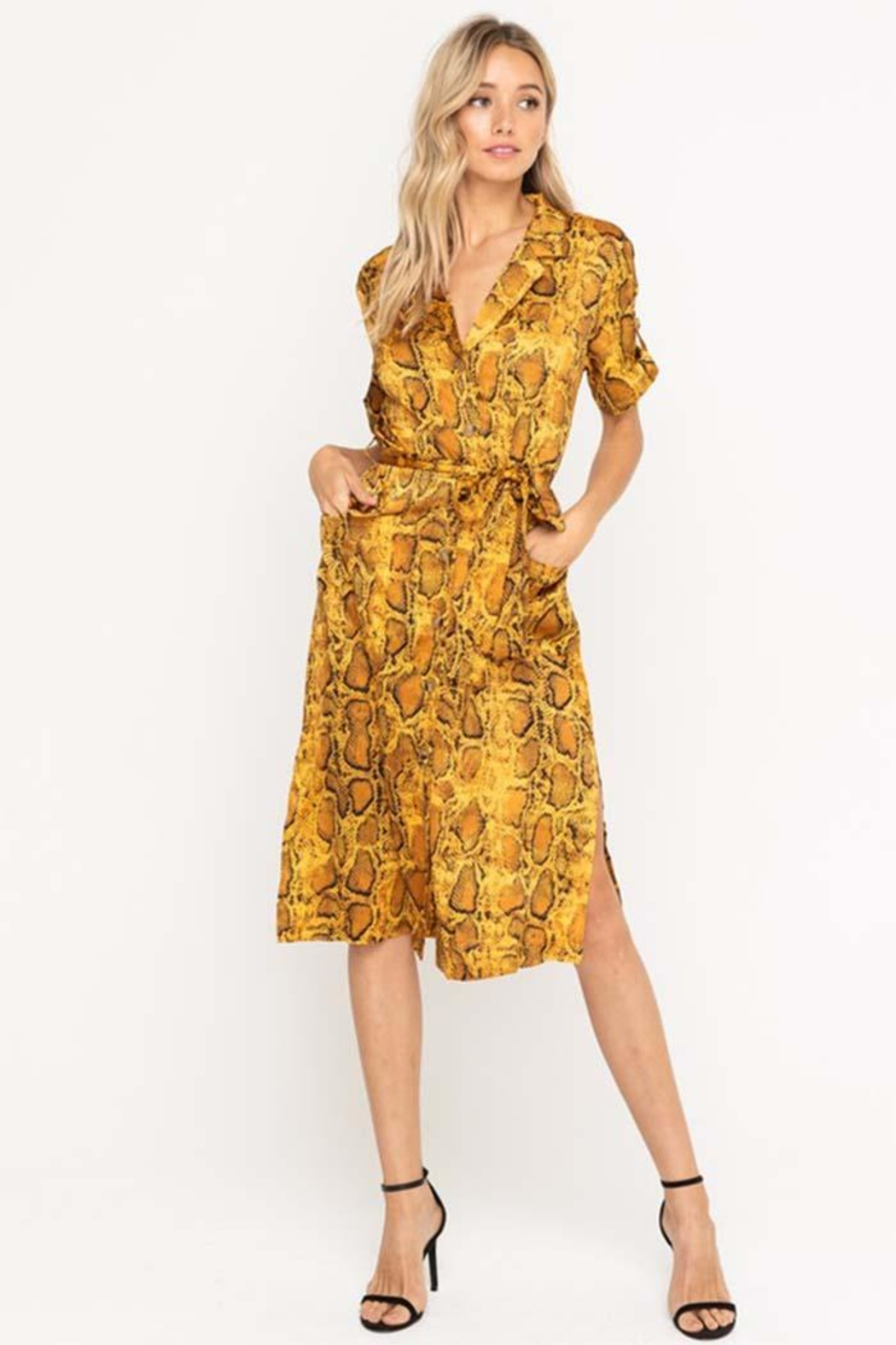 Lush Python Midi Dress - Main Image