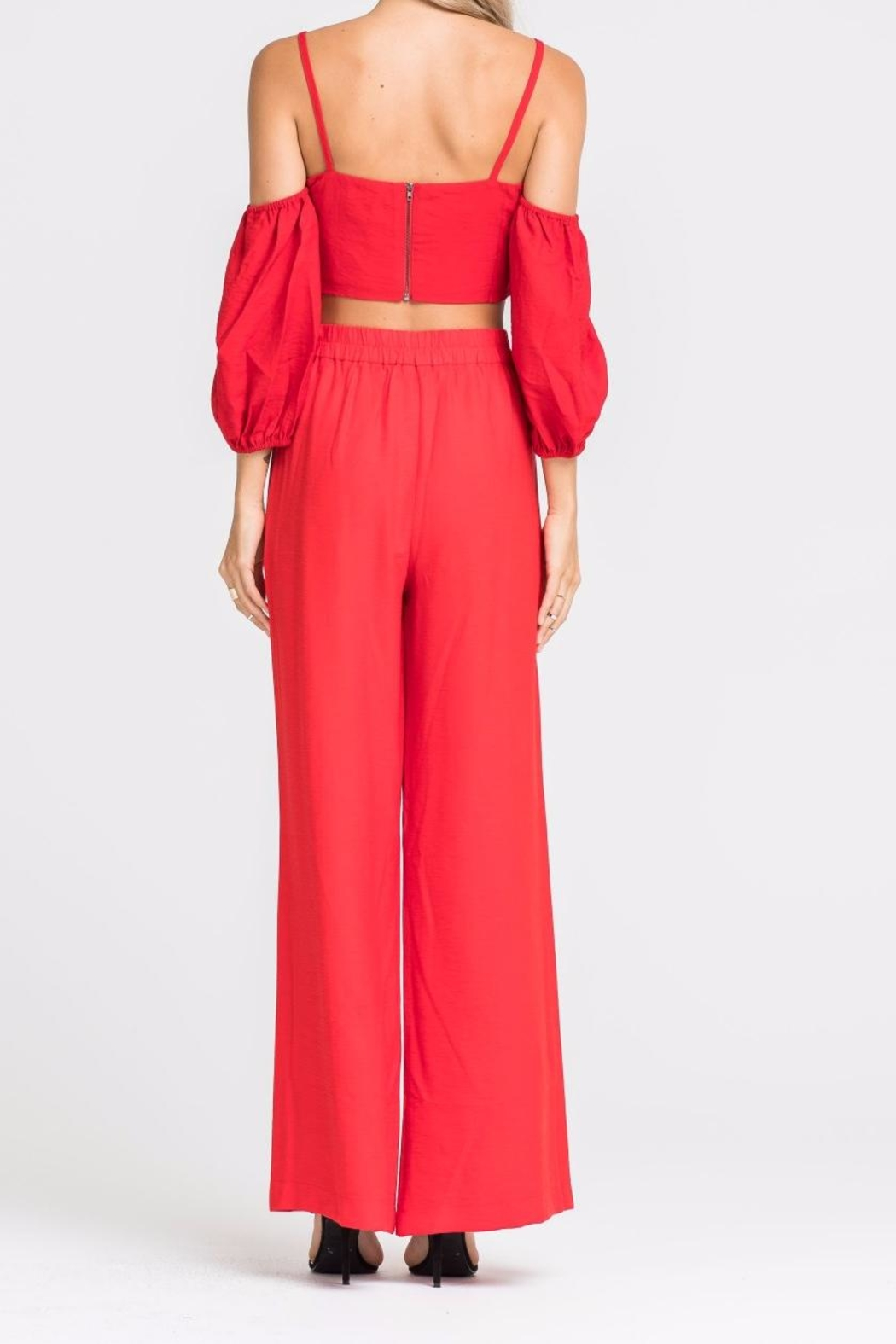 Lush Red Crop Top - Side Cropped Image