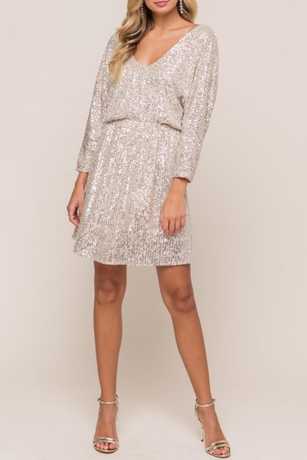 Lush Silver Sequin Mini-Dress - Side Cropped Image
