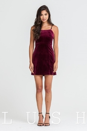 Lush Sleeveless Velvet Dress - Product Mini Image
