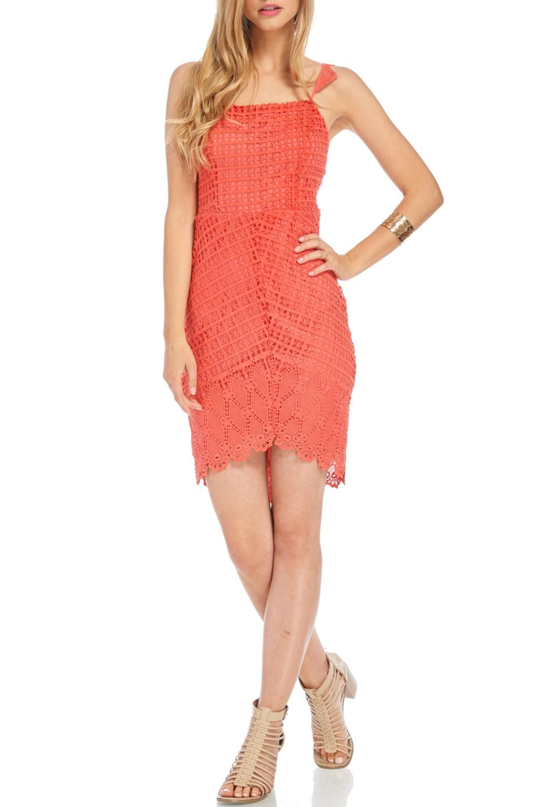 Lush Spiced Coral Dress - Main Image