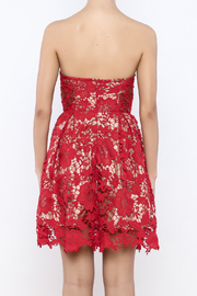 Lush The Party Dress - Back cropped