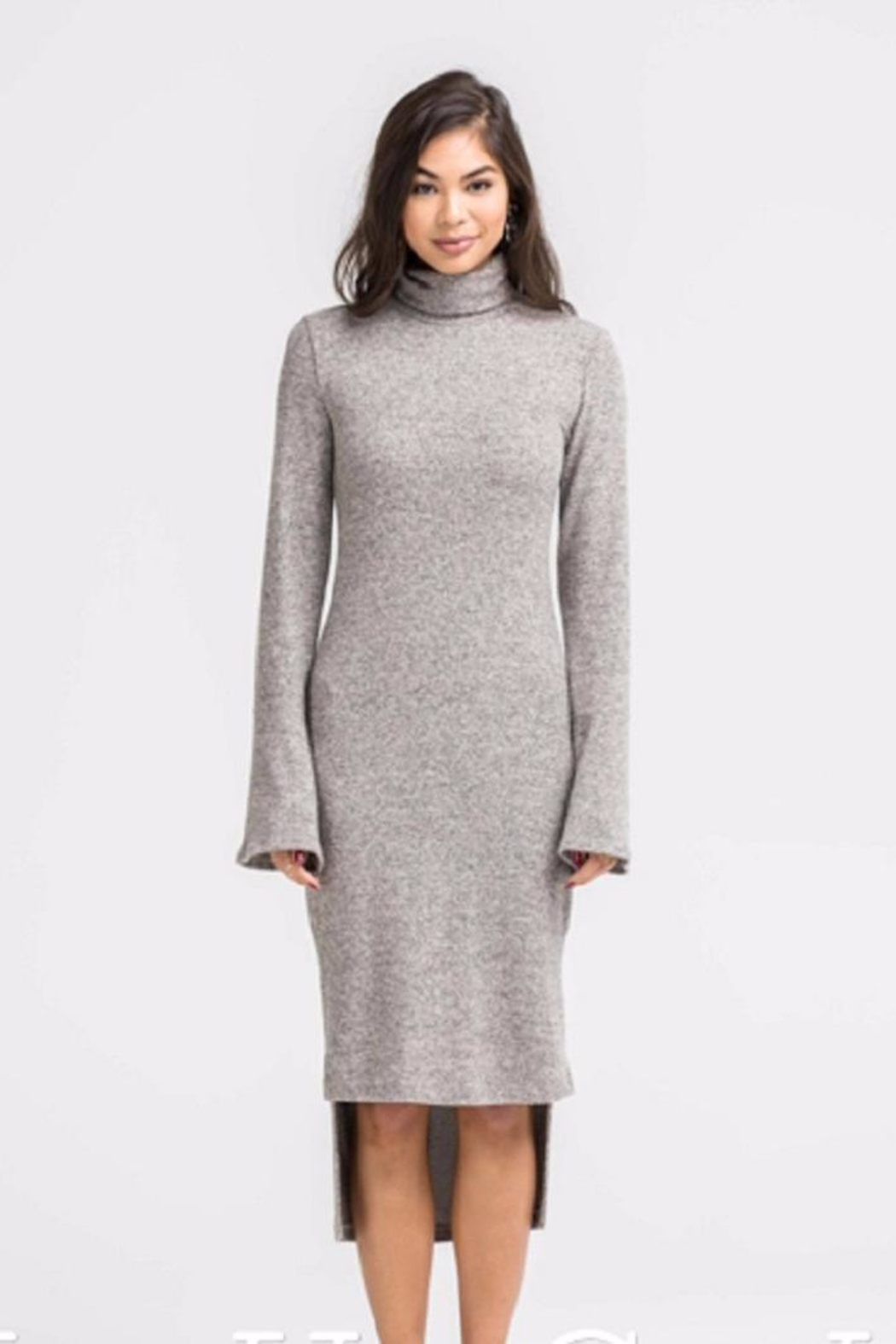 Lush Turtle Neck Sheath Dress - Main Image