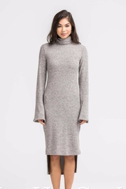 Lush Turtle Neck Sheath Dress - Front cropped