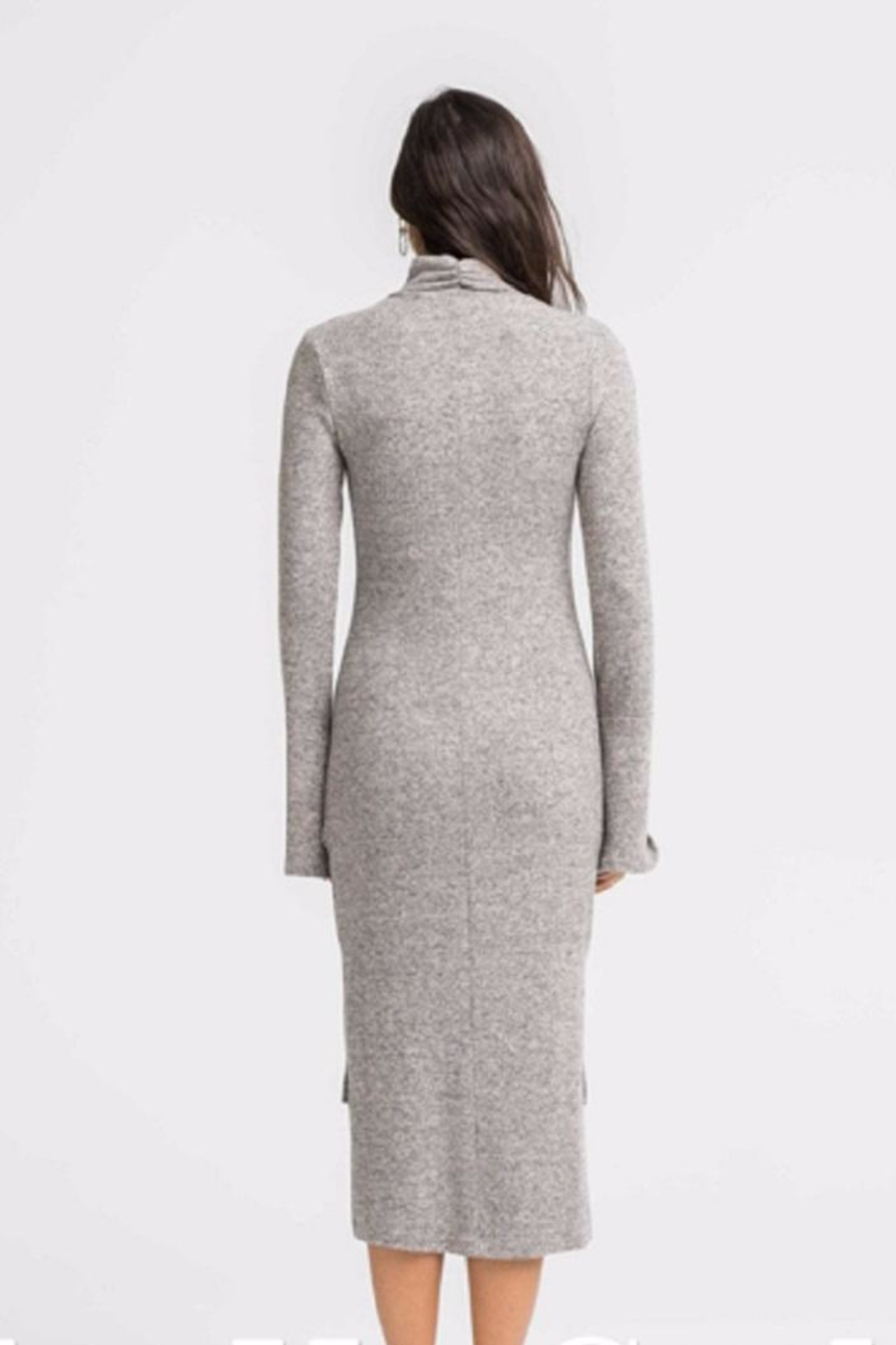 Lush Turtle Neck Sheath Dress - Back Cropped Image