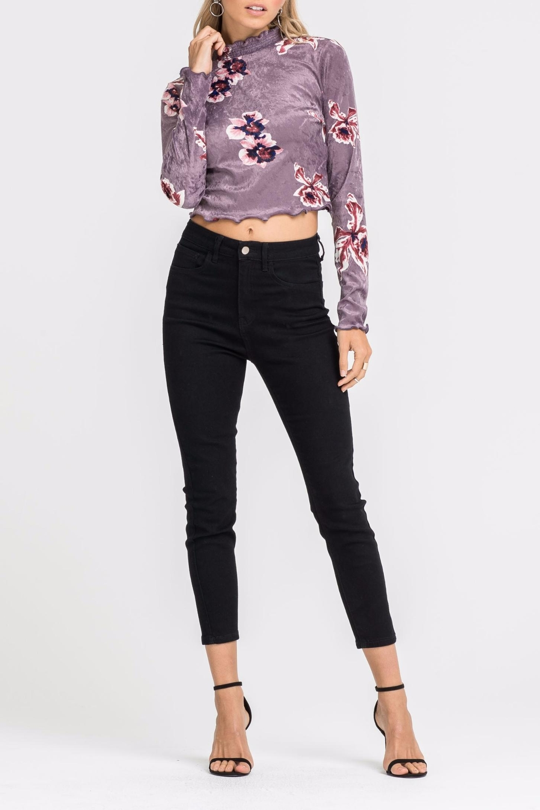 Lush Velvet Crop Top - Front Cropped Image