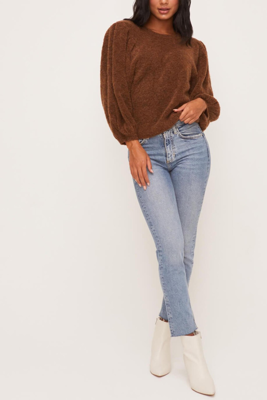 Lush Clothing  Brown Balloon-Sleeve Sweater - Front Full Image