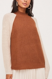 Lush Clothing  Colorblock Crew-Neck Sweater - Front cropped