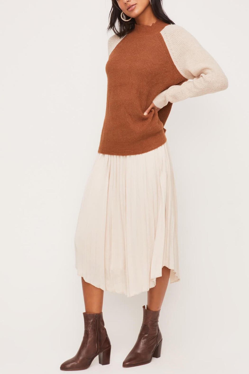 Lush Clothing  Colorblock Crew-Neck Sweater - Side Cropped Image