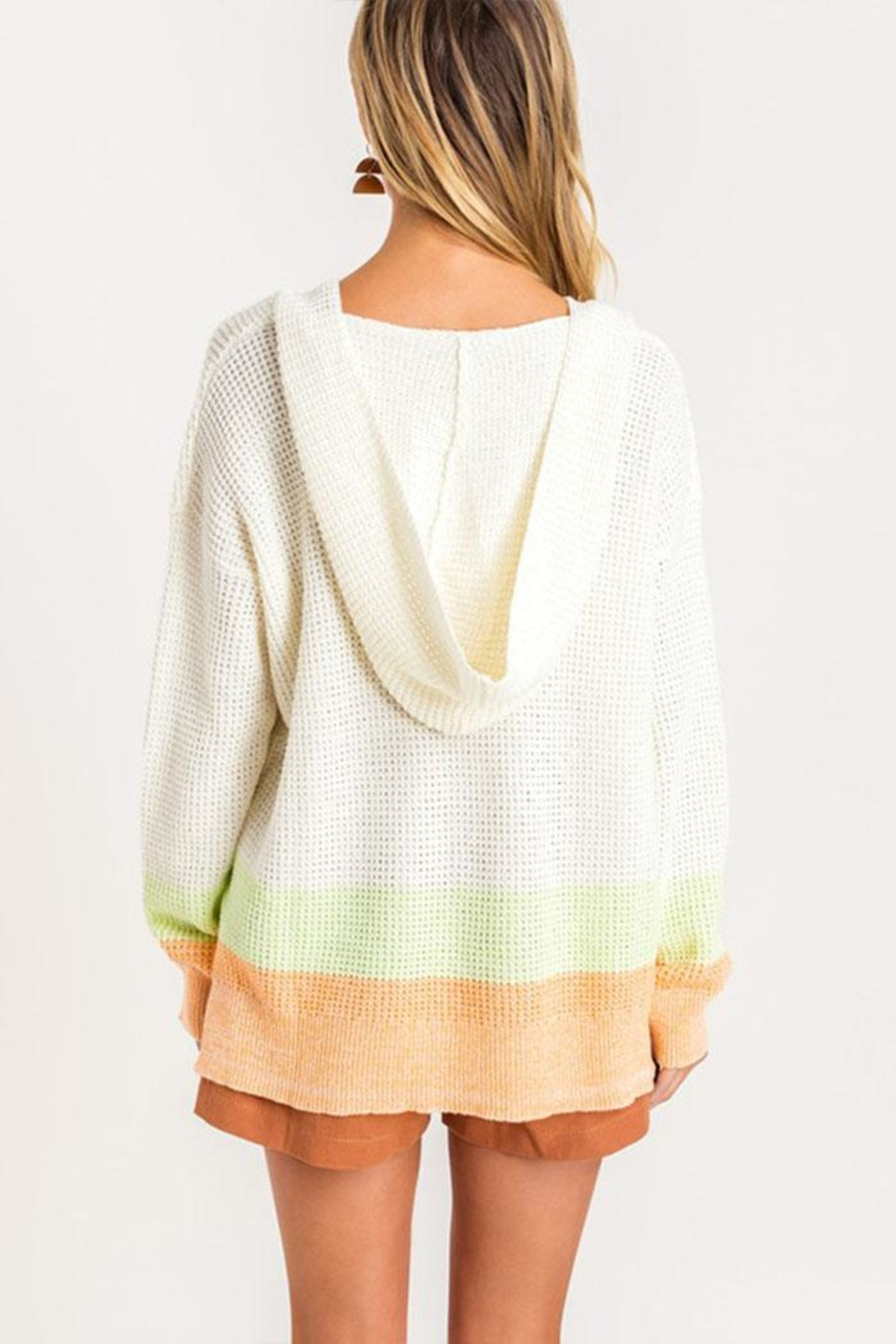 Lush Clothing  Colorblock Hooded Sweater - Front Full Image