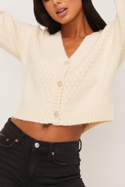 Lush Clothing  Cropped Cardigan Sweater - Front full body