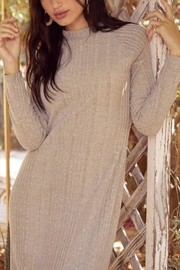 Lush Clothing  Mock-Neck Knit Dress - Front full body