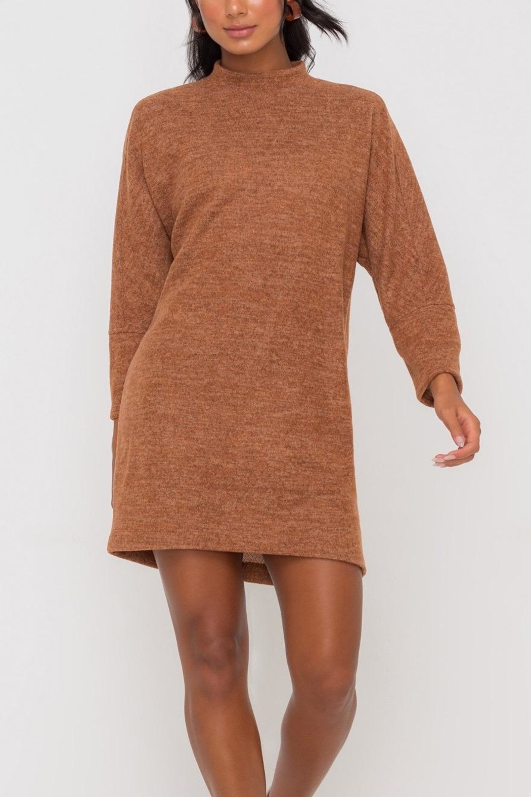 Lush Clothing  Mock-Neck Knit-Dress - Hazel - Back Cropped Image