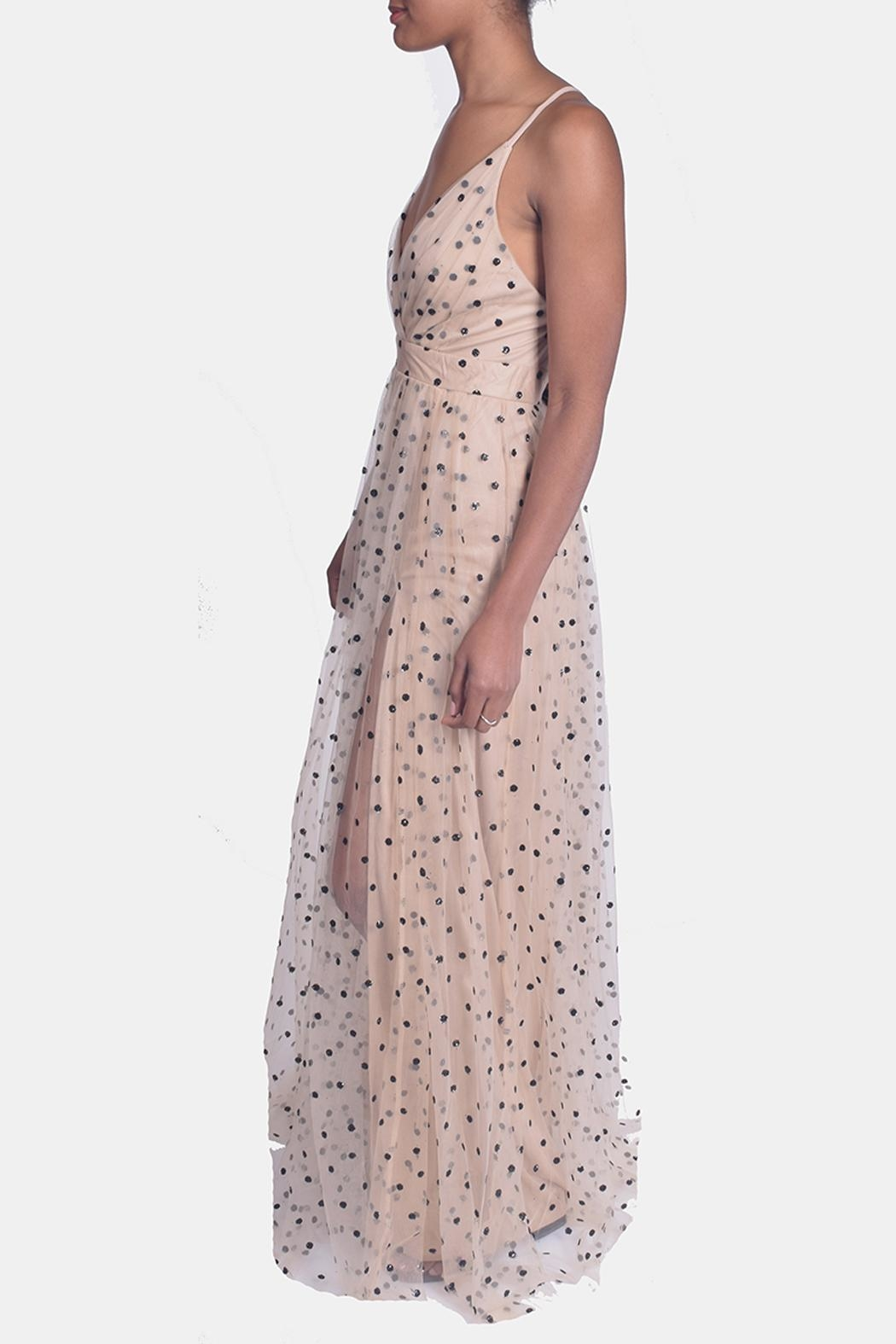 luxxel Enchantress Polka Dotted Gown - Side Cropped Image