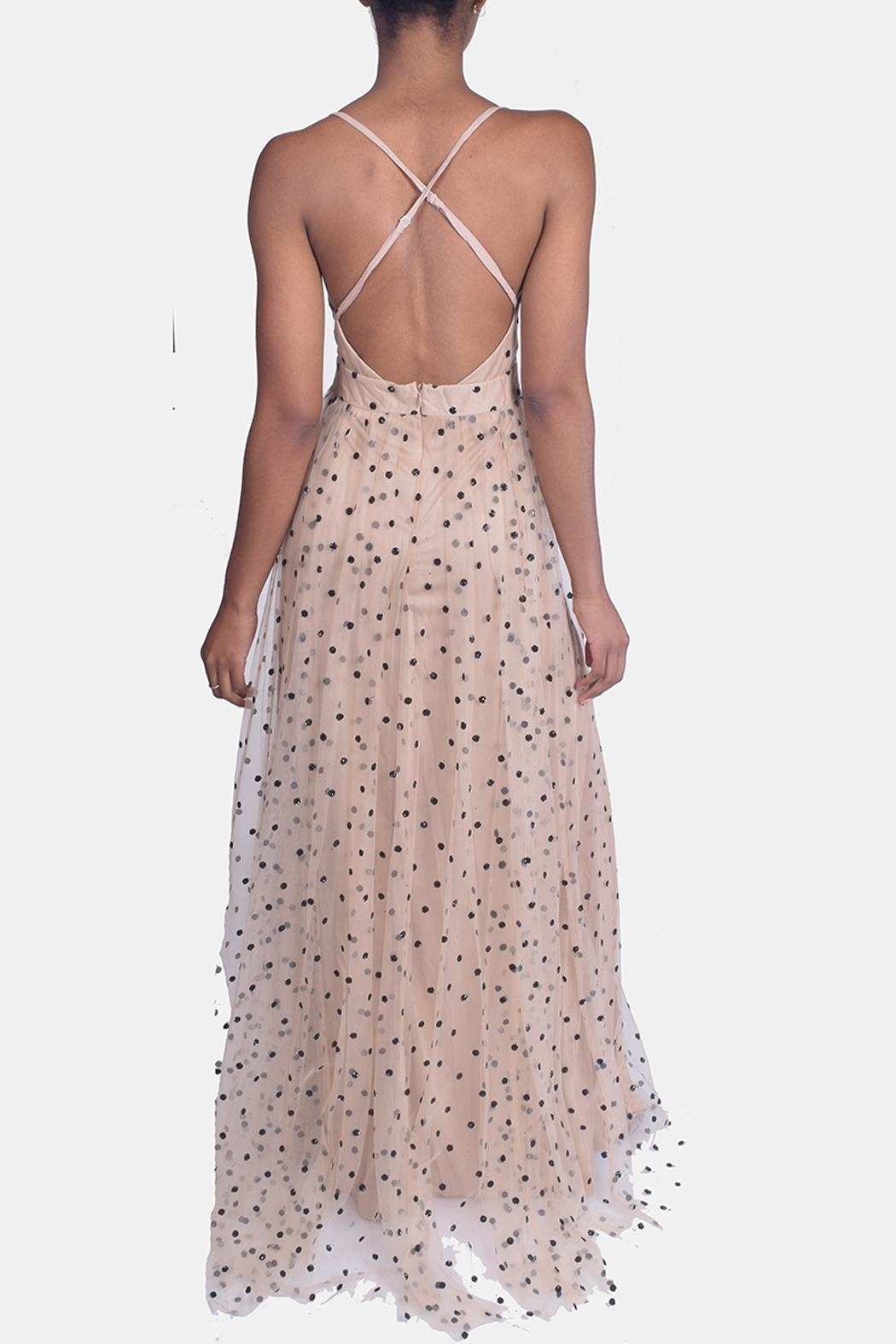 luxxel Enchantress Polka Dotted Gown - Back Cropped Image