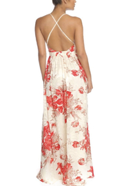 luxxel Flock Chiffon Gown - Back cropped