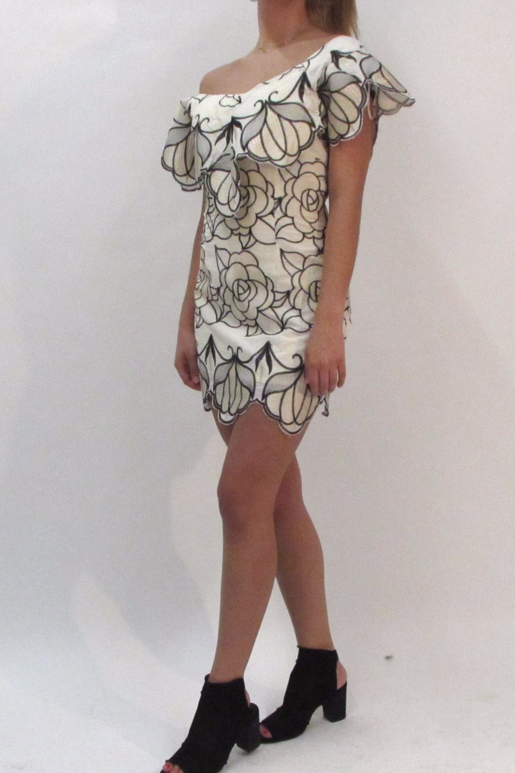 luxxel Floral Crochet Dress - Front Full Image