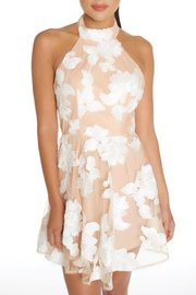 luxxel Nude Florals Dress - Product Mini Image