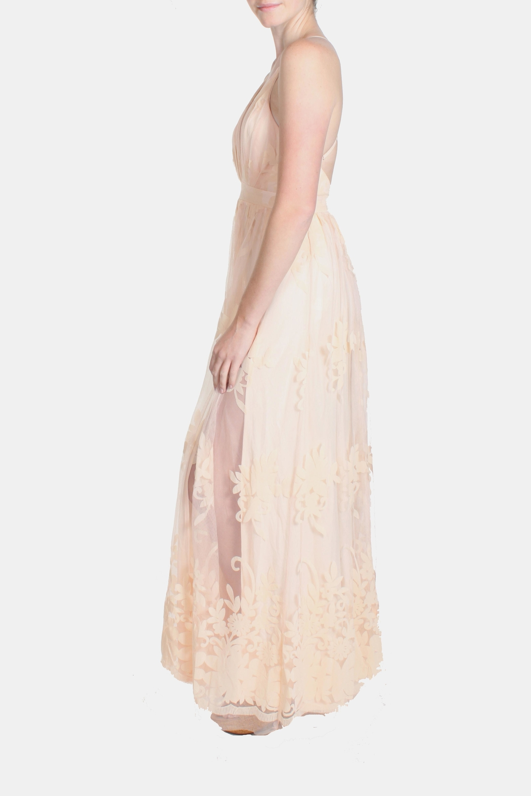 luxxel Pink Monochrome Floral Gown - Side Cropped Image
