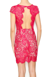 luxxel Scarlet Lace Mini Dress - Back cropped